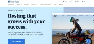 Bluehos WordPress hosting service