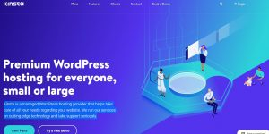 Kinsta WordPress hosting sites